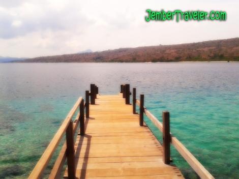 Jember Traveler First Menjangan 05