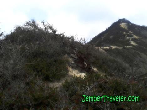 JemberTraveler-Ijen 05
