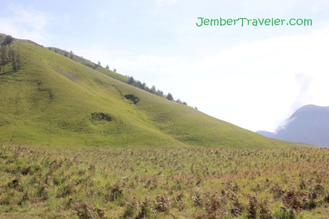 Jember Traveler Bukit Teletubbies 02