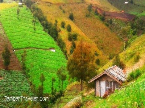 Rumah di lereng pegunungan yang indah