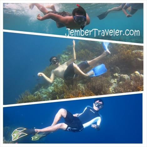 Jember Traveler Segambreng Menjangan 10