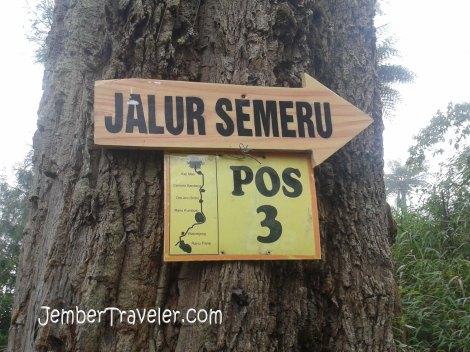 Jalur Semeru Pos 3