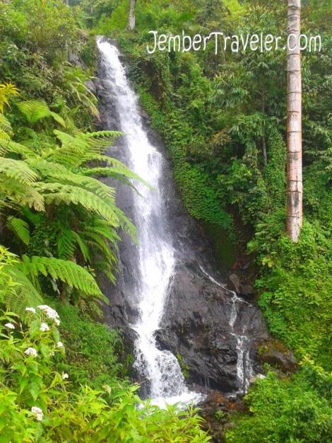 Air Terjun Tancak Tingkat Kedua.  Cukup tinggi air terjunnya.