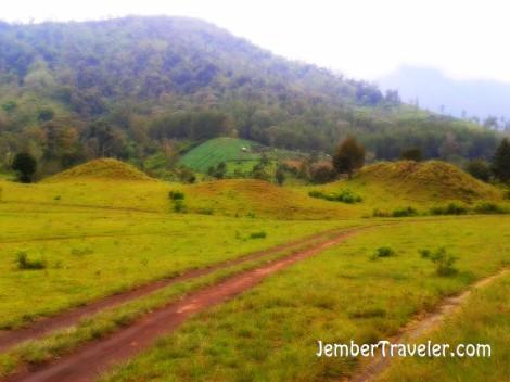 Perjalanan pulang menuju Desa Curah Macan