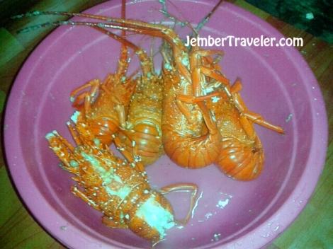 Lobster setelah direbus