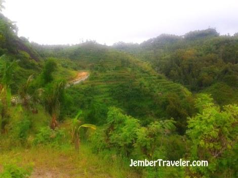 Jember Traveler Watu Lumbung 03