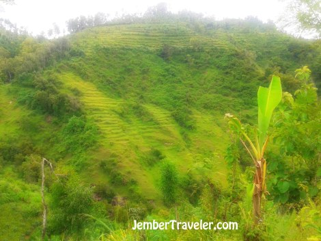 Jember Traveler Watu Lumbung 04