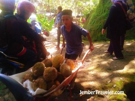 Petani durian dengan bangga membawa hasil panennya