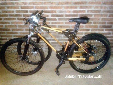 Sepeda Bambu (SPEDAGI)
