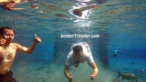 Jember Traveler Umbul Ponggok 04
