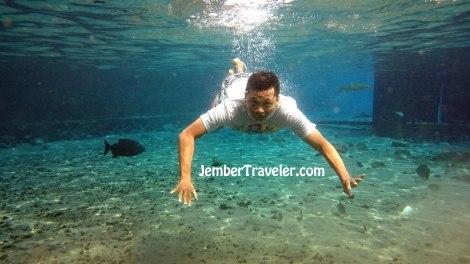 Jember Traveler Umbul Ponggok 07