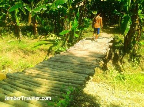 Melewati jembatan kayu