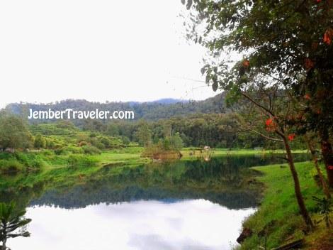 Salah satu pemandangan di Situ Patengan