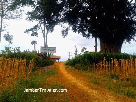 Jember Traveler Candi Deres 06