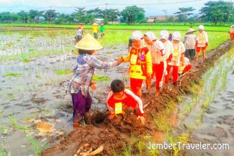 Ibu-ibu petani tak tega melihat anak-anak terpeleset. Mereka lebih dulu membantu anak-anak daripada menanam bibitnya. Wueehhh naluri keibuannya muncul.